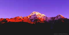first light over Mt. Annapurna south 7,219 m #Nepal (IshworAD) Tags: mountain mountains clouds sky morning sunrise firstlight mtannapurnasouth photography trekking trekkingnepal trekkinginnepal teamwildwalkers sony sonycamera landscape village villagelife himal