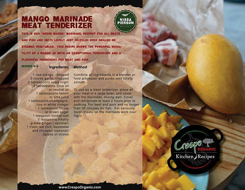 "Mango  Marinade - Meat Tenderizer • <a style=""font-size:0.8em;"" href=""http://www.flickr.com/photos/139081453@N03/32337863752/"" target=""_blank"">View on Flickr</a>"