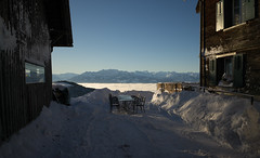 box seat @ Alp Scheidegg (ZH) (Toni_V) Tags: m2402907 rangefinder digitalrangefinder messsucher leicam leica mp typ240 28mm elmaritm12828asph snowshoeing schöneich schneeschuhlaufen zürcheroberland winter scheidegg restaurantalpscheidegg kantonzürich switzerland schweiz suisse svizzera svizra europe nebelmeer seaoffog snow schnee ©toniv 2017 170121