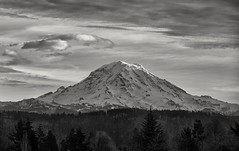 false impressions... (Alvin Harp) Tags: pnw washington washingtonstate pacific monochrome bwlandscape bwwinter bw blackandwhite volcano mountrainier january 2017 sonyilce7rm2 fe24240mm naturesbeauty nature alvinharp