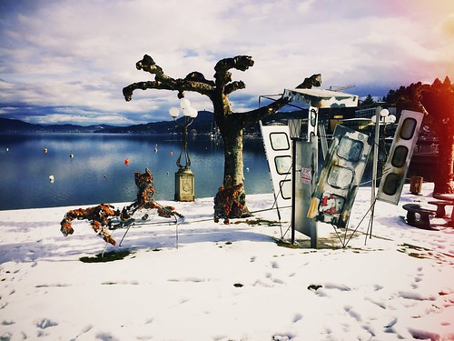 austrian winter ❄️ #winter #austria #carinthia #wörthersee #art #kunst #telefonzelle #tree #water #lake #snapshot