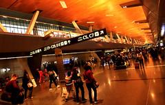 Doha Airport 23 (David OMalley) Tags: qatar doha airport hamad international