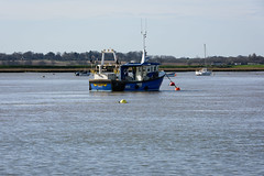 Audrey M (Nick_Rowland) Tags: bawdsey beach suffolk felixstoweferry fishingboat moorings riverdeben