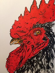 A drawing a day, day 19, drawing 2 (anviss) Tags: illustration sketch tekening illustratie schets rooster haan pentel brushpen tombow marker stift red black