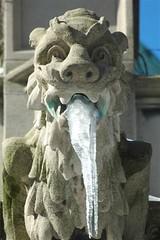 Gargoyles, NY 1 303 (mysunsin) Tags: gargoyle grotesque