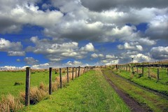 Whittliemuir Walk (Scott Foy) Tags: sky sign clouds canon fence scotland track path trail photowalk fields a620 renfrewshire howwood whittliemuir specnature whittliemuirwalk scofo76utatafeature scottfoy