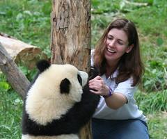 Chasing games (somesai) Tags: stand panda hey tian lookup tai nationalzoo hi endangered pandas backview meixiang taishan dczoo butterstick pandaunlimited