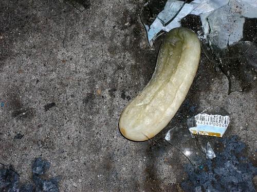 Rotten Pickle by PaulCochran.