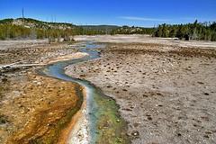 norris geyser basin (Sabinche) Tags: usa nature yellowstonenationalpark yellowstone wyoming geyser sabinche norrisgeyserbasin