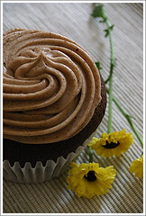 ott chocolate cupcake
