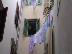 Purple Wash (monkeyiron) Tags: purple line slovenia laundry shutter piran washing msh0407 msh04076