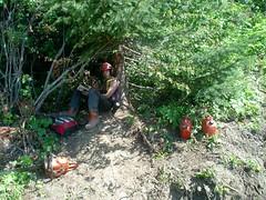 bush reading (BUSHMAN_ACE) Tags: trees summer bush logging equipment clark machines loader timberjack skidder yarder 966