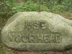 Use Your Head (iandavid) Tags: massachusetts gloucester dogtown stonecarvings rockport dogtowncommons babsonsboulders useyourhead
