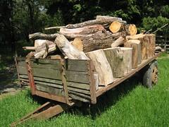 Logs (eloc) Tags: wood trees dead log rust lakes logs bark cart firewood deadtrees