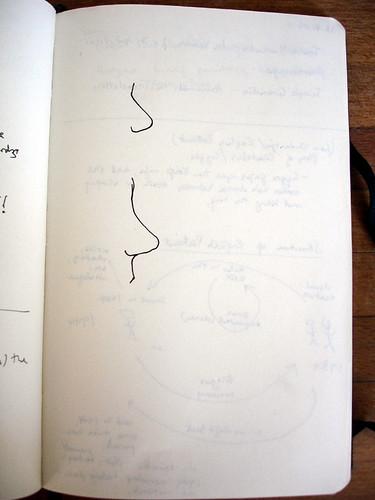 A nose drawn twice at David Mitchell reading