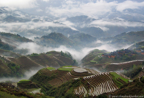 Rice terraces at Jinkeng (龙胜,金坑) at dawn