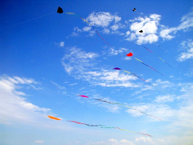 Fly a kite and toss your worries to the wind