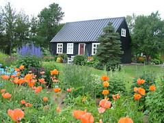 Akureyri Botanic Gardens (puffin11uk) Tags: gardens iceland botanic akureyri 50club puffin11uk