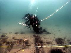 Swash Channel Designated Wreck 1