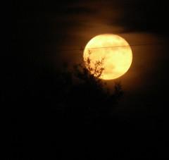 Orange Moon 4 (E_Journeys) Tags: orange moon fullmoon fullsturgeonmoon fullredmoon fullgreencornmoon grainmoon