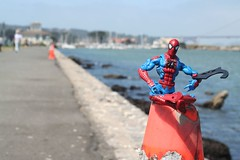 SPIDERMAN-0907-small