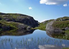 Skarfjellet - Verdal - by @rild