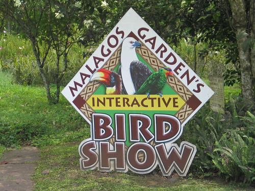 Malagos Garden Resort Davao Bird Show