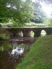 Bow Bridge,near Furness Abbey (billnbenj) Tags: trees field grass reflections river ancient cumbria redriver barrow bowbridge