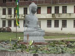 Nyingma monastery buddha pond