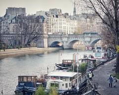 Promenade d'automne, Paris (sistereden2) Tags: îledelacité pontneuf péniches quais laseine olympus omd em5 markll leicanocticron425mm