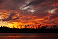 Sky on Fire (Jim Atkins Sr) Tags: spectacularsunsetsandsunrises cloudsstormssunsetssunrises sunset cloudscape clouds northcarolina northwestcreek crimson creek fairfieldharbour sonya58 sony sonyphotographing