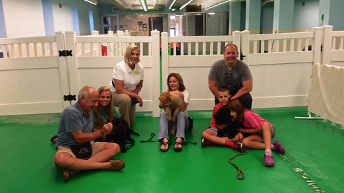 "Puppy Head Start, Session J, Summer 2015-Wed; Class Photo-02 • <a style=""font-size:0.8em;"" href=""http://www.flickr.com/photos/65918608@N08/20716445018/"" target=""_blank"">View on Flickr</a>"