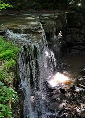 DSC_7340 (alesandrox) Tags: ontario nature hike decew rockway