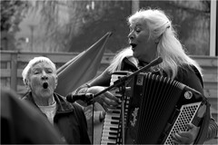 1 maj (P-O Alfredsson) Tags: musician music song musik harmonica vocal harmonika dragspel sng vokal fridn musikant segerson barbrofridn