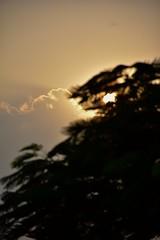 Time's up (abrarhayat) Tags: sunset sun fall nature twilight peace bokeh peaceful dhaka bangladesh