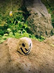 Day 295 of 365 - Wayside Smile (sluggoman) Tags: day295 365days smileproject 365daysproject smilestone httpbitlysmile2015