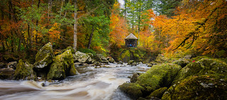 Autumn at the Hermitage, Dunkeld