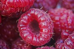 DSC00625_edited (François wry) Tags: food fruit de rouge berry reflet champ miam framboise profondeur rochecorbon nourritue