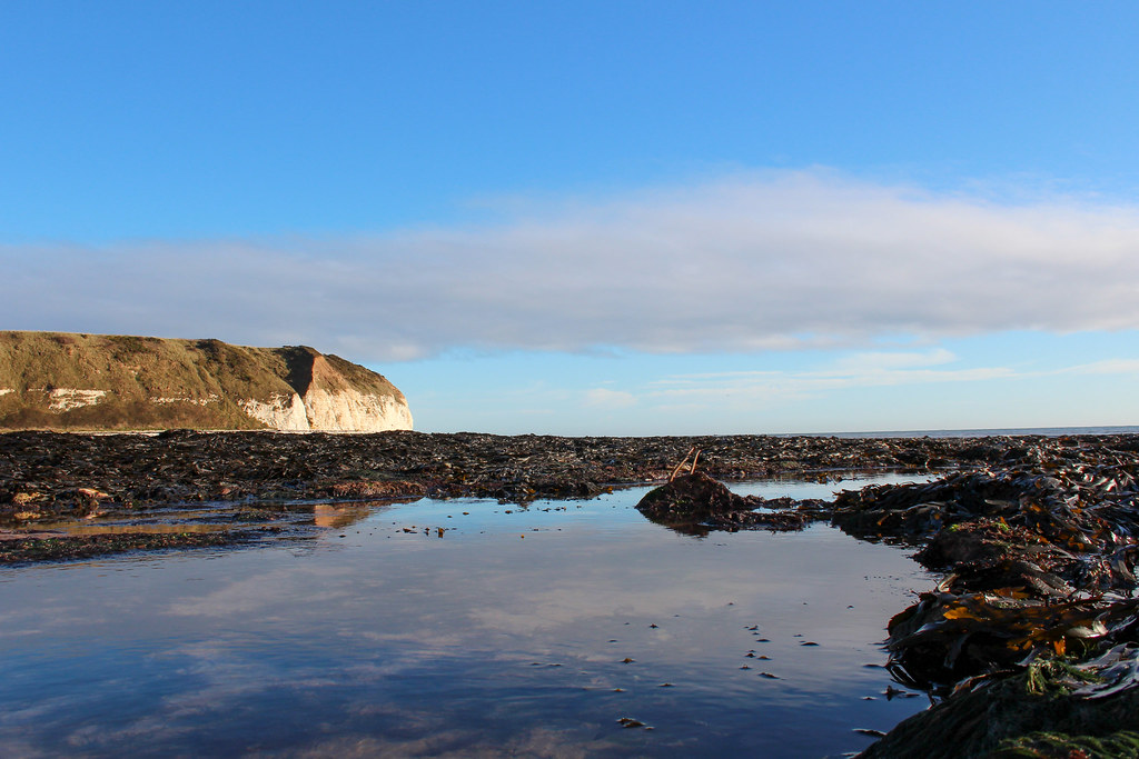 South Flamborough Landing Scene