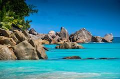 DSC_1190 2 (NICOLAS POUSSIN PHOTOGRAPHIE) Tags: soleil eau sable bleu coco fin vague plage rocher palmier bois seychelle turquoide