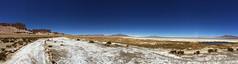 Salar de Tara (Mono Andes) Tags: chile panorama andes desierto punadeatacama regindeantofagasta reservanacionallosflamencos salardetara