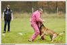First Von King Von Backdraft RINALDI V  -0936 (Fab Photos Canine et Sportive) Tags: king von first backdraft