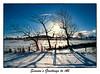 Christmas Card (tkimages2011) Tags: christmas card winter greeting greetingcard tree snow sun landscape blue sky christmascard shadows newyear border
