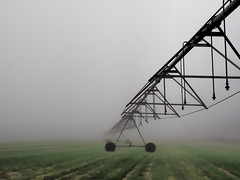 Infinity (TuthFaree (Tornado Devastated My Community)) Tags: elements fog rural farm irrigation wheat green pivot steel infinity line shape ga georgia swga moody morning atmosphere perspective distance