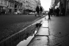 Suis-je toujours la plus belle ? (cactus2016) Tags: paris blackandwhite noiretblanc lowpov reflets reflection monochrome trottoir rue street streetphoto