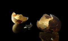 """""""Empty Shell"""" (art_lee98) Tags: stilllife tabletop egg food black lighting"""