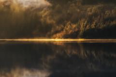 Fragments (Vemsteroo) Tags: 12 50140mm 56mm atmospheric breconbeacons brecons ethereal fog fuji fujifilm lrthefader mist morning pont pontsticill pontsticillreservoir reflection sunrise warm glow beautiful lake water winter xt2