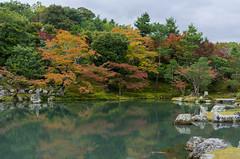 Autumn Mix (dtra) Tags: arashiyama autumn green japan koyo kyoto maple orange pond red reflection rock temple tenryuji tree water yellow