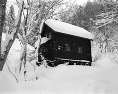 Hiyamizu hut (threepinner) Tags: hiyamizuhut hut winter mountainsnaps gf670 fujica ebcfujinon 80mm f35 tmax400 spd mtsapporo sapporo hokkaidou hokkaido northernjapan japan snow woods forest 札幌岳 札幌 北海道 北日本 日本