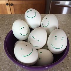 Hard Boiled Eggs (marylea) Tags: may25 2015 eggs happyeggs hardboiledeggs smiley kitchen bowl bowlofeggs